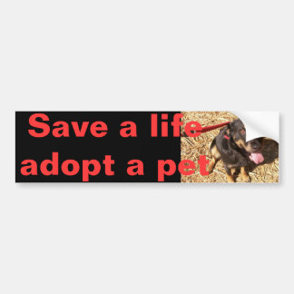 Rotti Mix Bumper Sticker