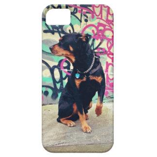 Rottie Graffiti iPhone SE/5/5s Case