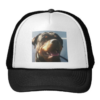 rottie love trucker hat
