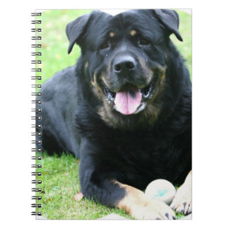 Rottie Notebook