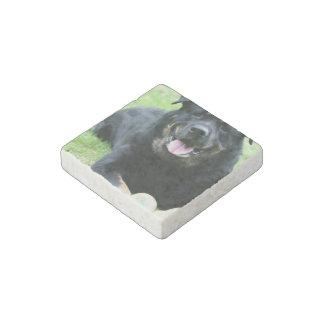 Rottie Stone Magnet