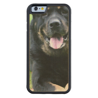 Rottie Carved® Maple iPhone 6 Bumper Case