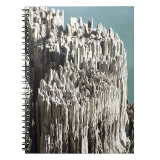 Rotting Wooden Bollard Notebook
