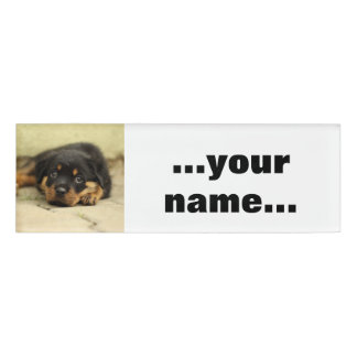 Rottweiler20150901 Name Tag