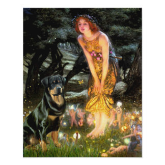 Rottweiler 3 - Mid Eve Print