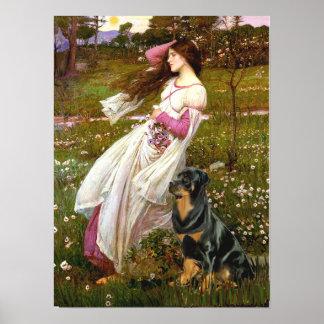Rottweiler (#5) - Windflowers Poster
