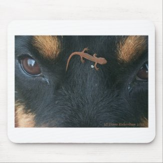 Rottweiler and salamander mouse pad mousepad