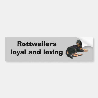 Rottweiler Bumper Sticker Car Bumper Sticker