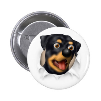 Rottweiler Busting Out Pinback Button