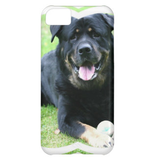 Rottweiler iPhone 5C Cover