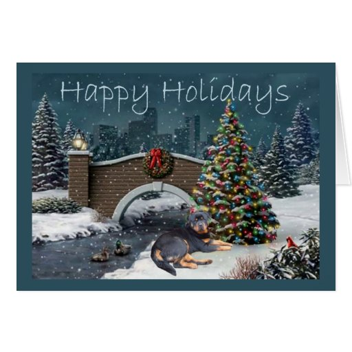 Zazzle Rottweiler Christmas Card Evening