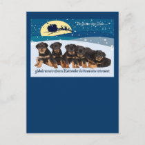 Rottweiler Christmas Sleigh Team Holiday Postcard