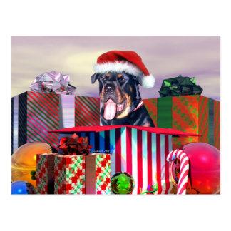 Rottweiler Christmas Surprise Post Card