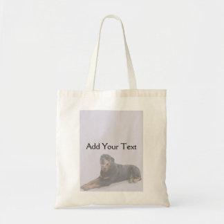 Rottweiler descolorado que coloca en gris bolsa tela barata