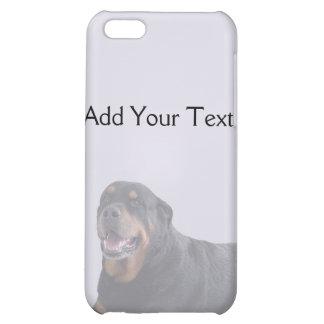 Rottweiler descolorado que coloca en gris