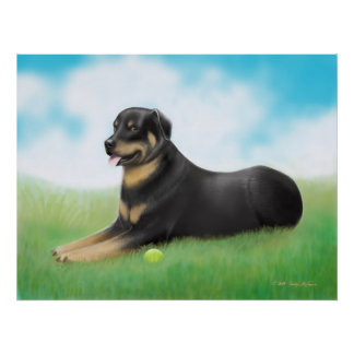 Rottweiler Dog and His Ball Poster