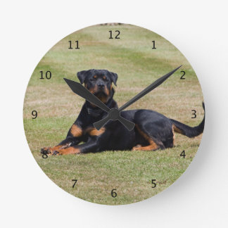 Rottweiler dog beautiful photo round wall clocks