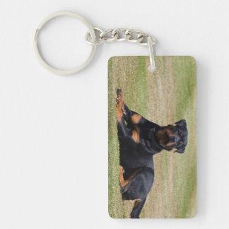 Rottweiler dog beautiful photo, gift Double-Sided rectangular acrylic keychain