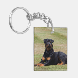 Rottweiler dog beautiful photo, gift keychain