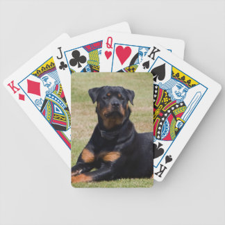 Rottweiler dog beautiful photo, gift bicycle playing cards