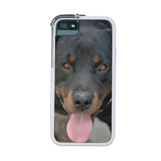Rottweiler Dog iPhone 5 Covers