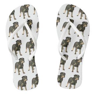 Rottweiler dog flip flops