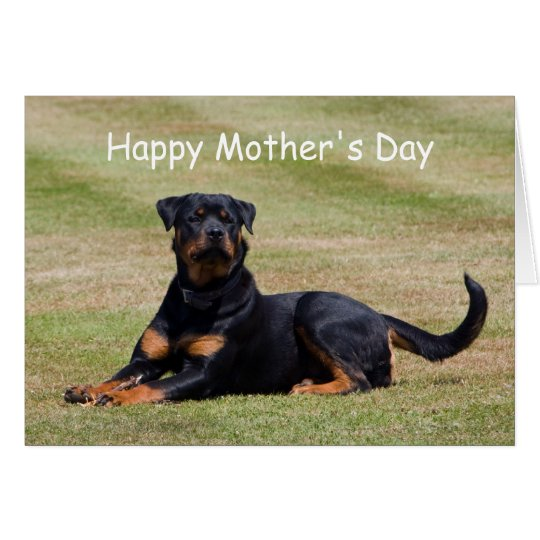 Rottweiler dog happy mother's day greetings card