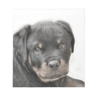 Rottweiler dog notepad