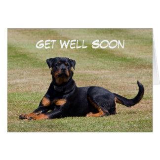 Rottweiler dog photo get well soon greetings card