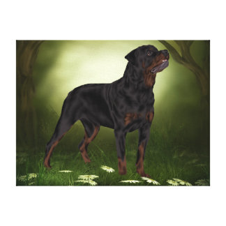 Rottweiler Dog, The Guardian Canvas Print