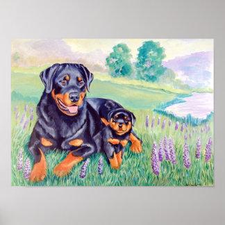 Rottweiler Dog Wall Poster Print
