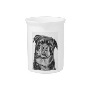 Rottweiler Drawing Drink Pitcher