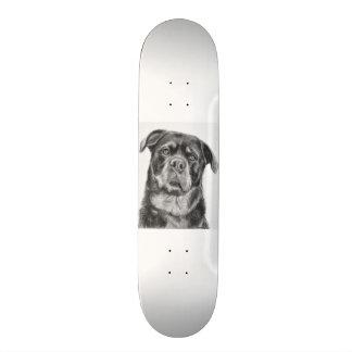 Rottweiler Drawing Skateboard Deck