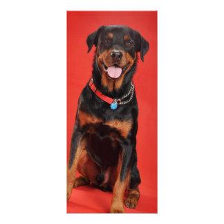 Rottweiler en rojo tarjeta publicitaria