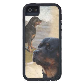 Rottweiler iPhone 5 Funda