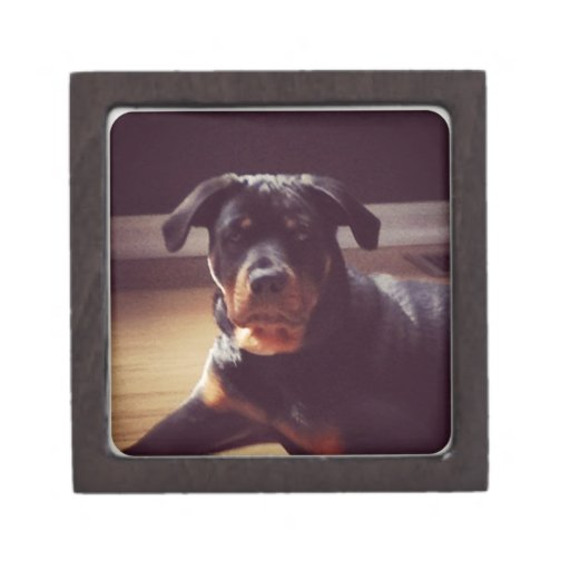 Rottweiler gifts premium jewelry box
