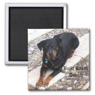 Rottweiler Imán Cuadrado