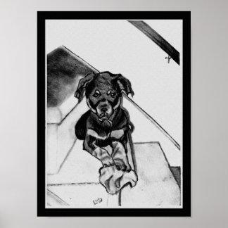 Rottweiler in Black & White Sketch Poster