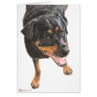 Rottweiler in Pastel Card