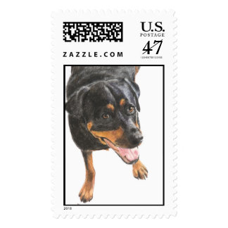 Rottweiler in Pastel Postage Stamp