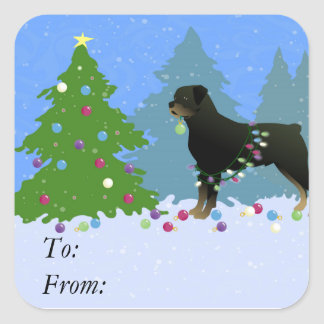 Rottweiler in the Christmas Forest Square Sticker