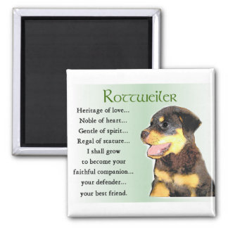 Rottweiler Lovers Gifts 2 Inch Square Magnet