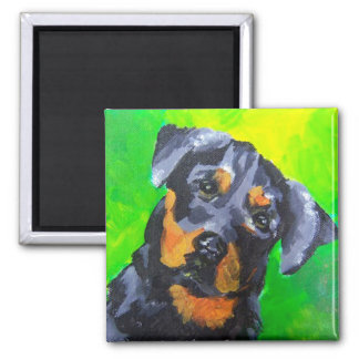 Rottweiler 2 Inch Square Magnet