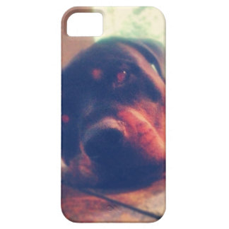Rottweiler Memories iPhone 5 Cases
