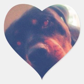 Rottweiler Memories Heart Sticker