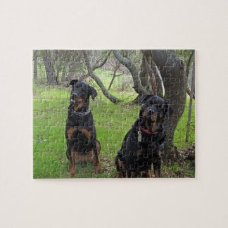 Rottweiler Mother and Daughter Puzzle