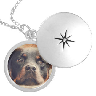 Rottweiler Necklace pendent locket
