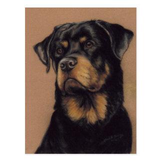Rottweiler Original art Postcard