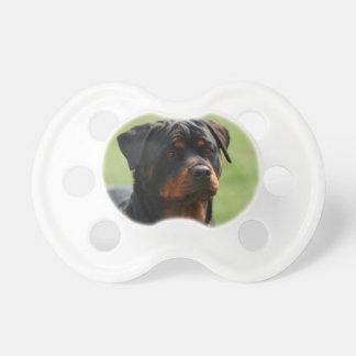 Rottweiler Pacifier