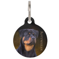 Rottweiler Pet ID Tag